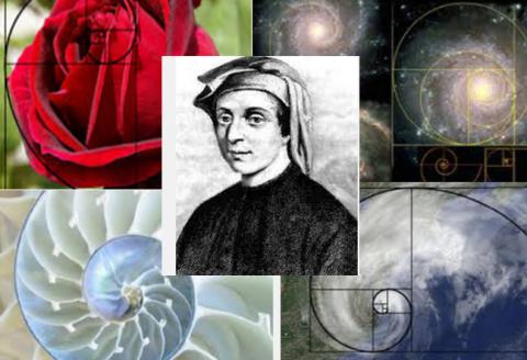 La Serie de Fibonacci y su utilización